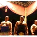 女子でも平気!初めての相撲観戦はチケット取って人気力士を見よう!